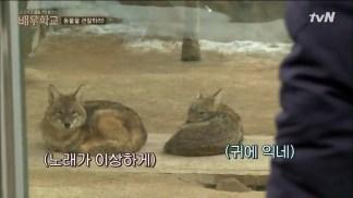 [tvN] 배우학교.E06.160310.HDTV.H264.720p-WITH.mp4_snapshot_00.15.41_[2016.03.11_22.36.42]