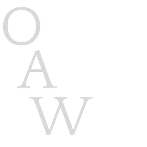 One Awesome Woman