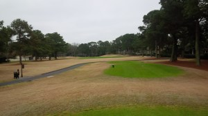 Despite the trees in the background, CCHH was actually pretty wide open for a Hilton Head golf course.