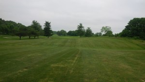 The fairways at Longview aren't pristine, but they are fully grown in and mowed appropriately.