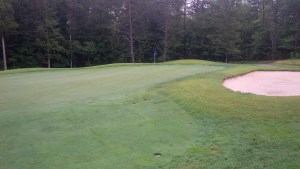 I was utterly impressed with the quality of Hidden Cove's greens, like the 3rd green pictured here.