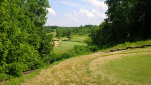 In better times, the view from Old Silo's 6th tee box was one of the best in Central Kentucky.