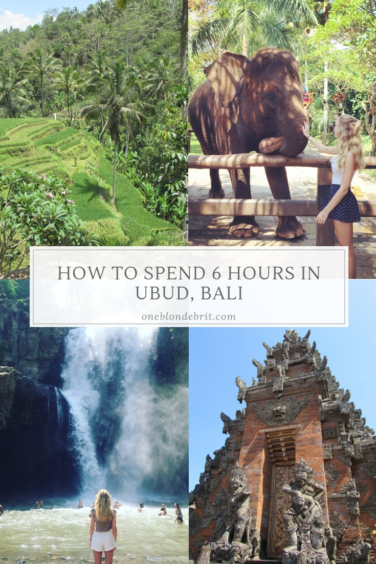 How to Spend 6 Hours in Ubud, Bali