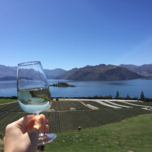 Rippon Winery, Wanaka