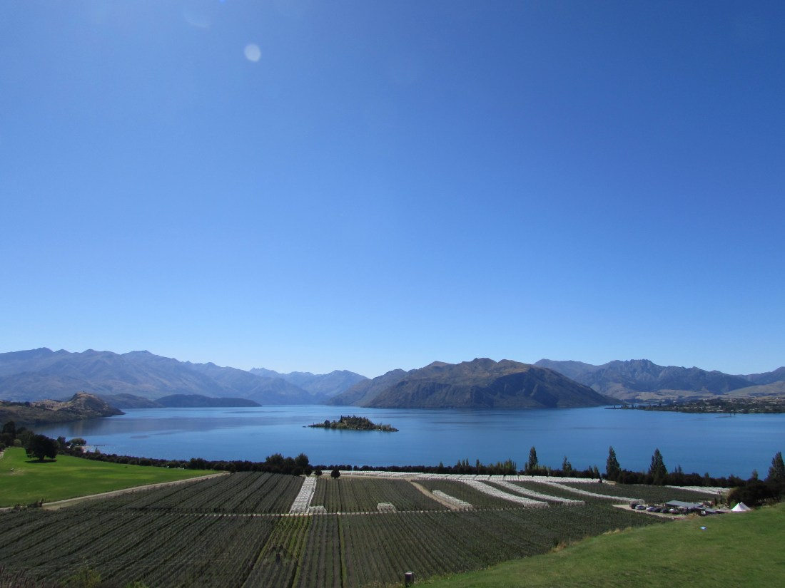 Rippon Winery Wanaka New Zealand
