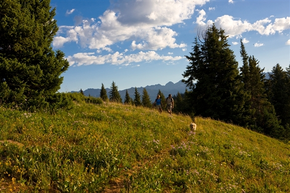 Photo of Vail in Summer