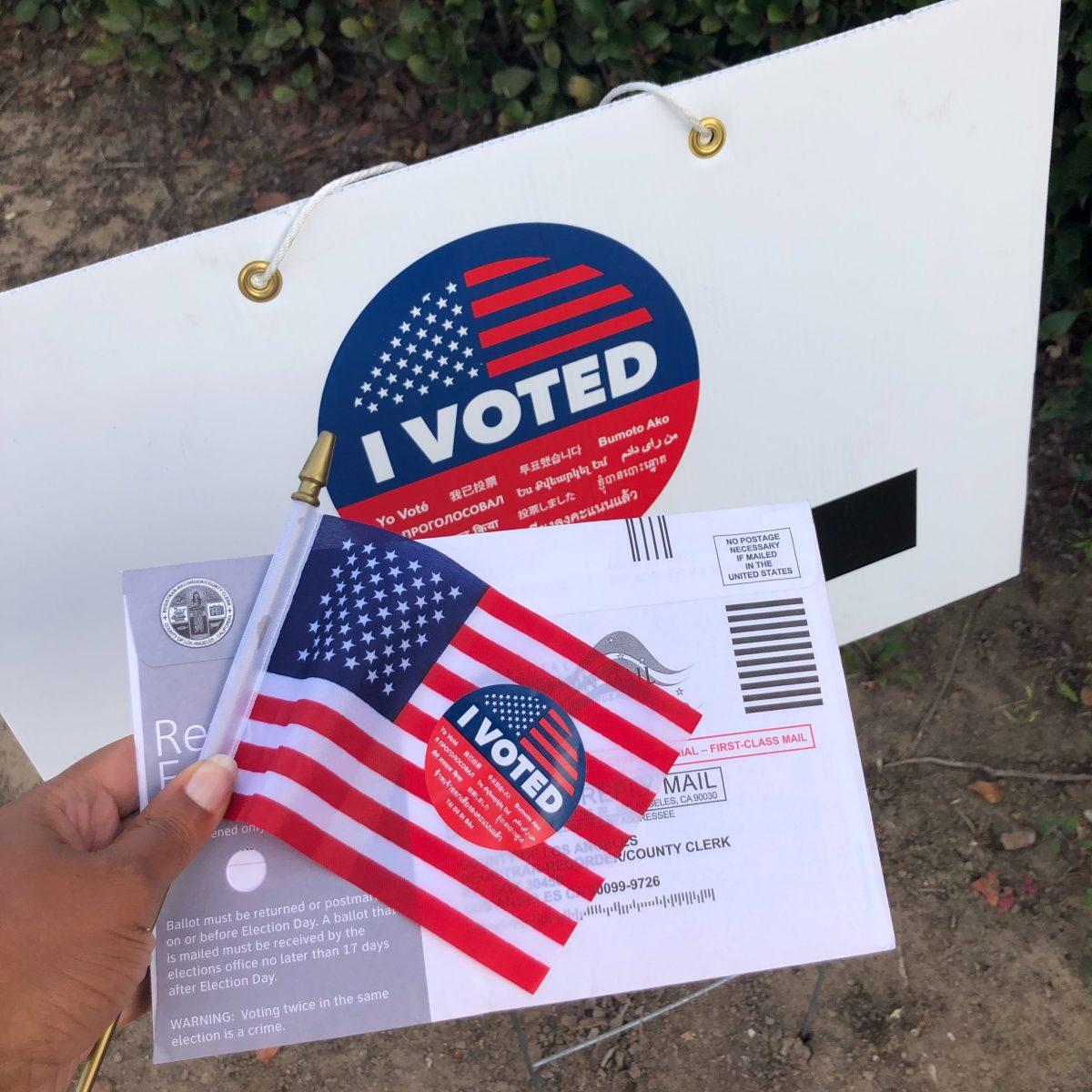 Burleson Texas Voting Demographics