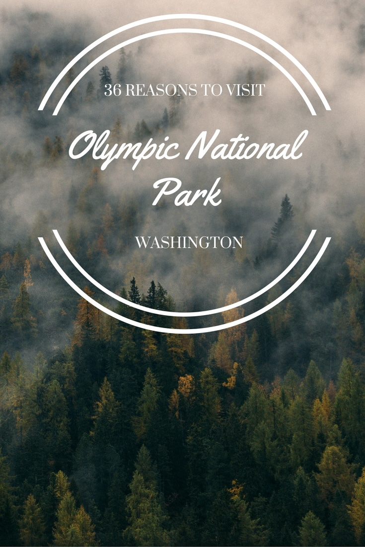36 Reasons to Visit Olympic National Park