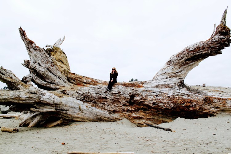 Fallen Tree on First Beach | One Chel of an Adventure