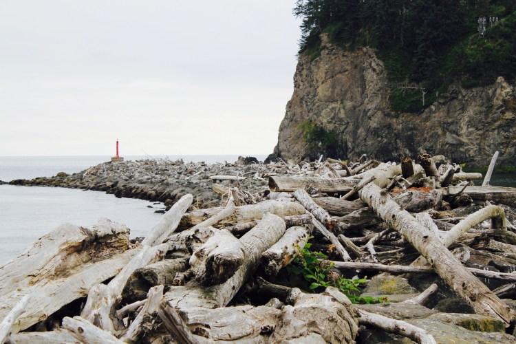 First Beach Driftwood   One Chel of an Adventure