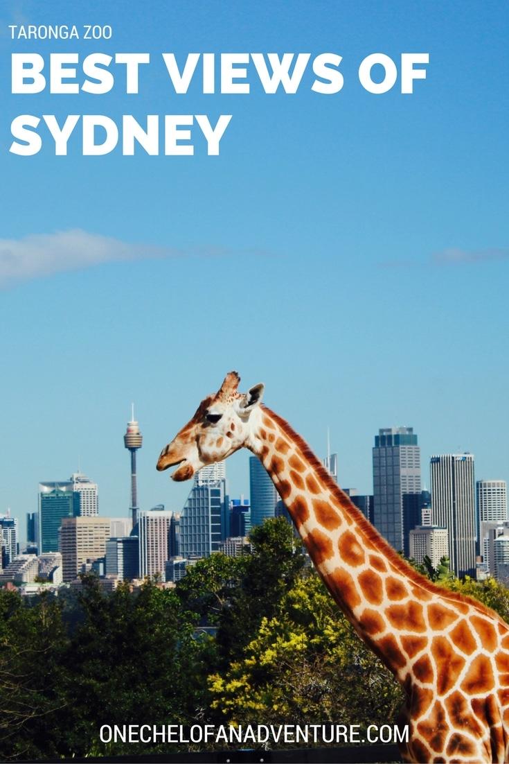 Taronga Zoo: Best Views of Sydney