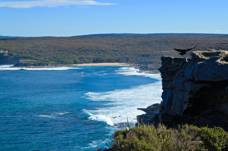 Marley Head at Royal National Park