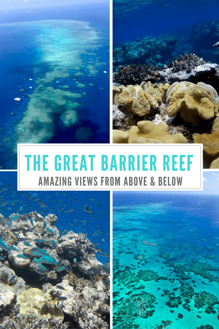 The Great Barrier Reef: Amazing view from above and below