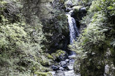 New Zealand Waterfall 2
