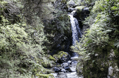 New Zealand Waterfall 2