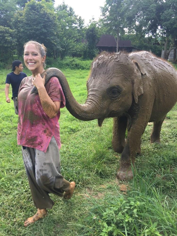 leading baby elephant at Ran-Tong