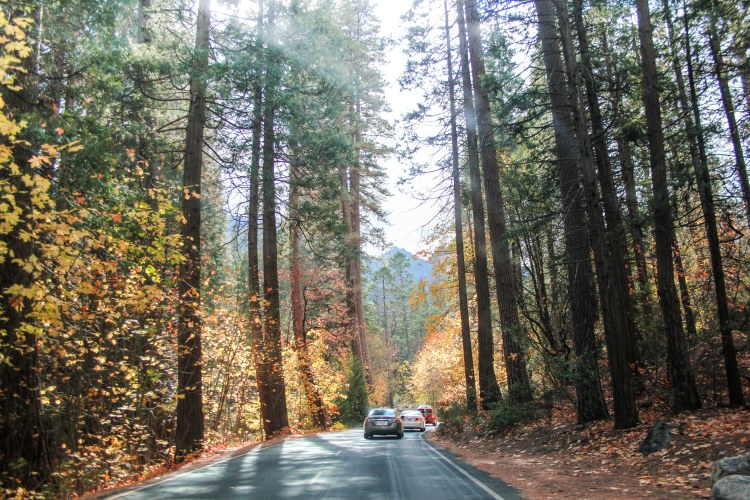 10 Stunning Photos from Yosemite Valley Drive-6