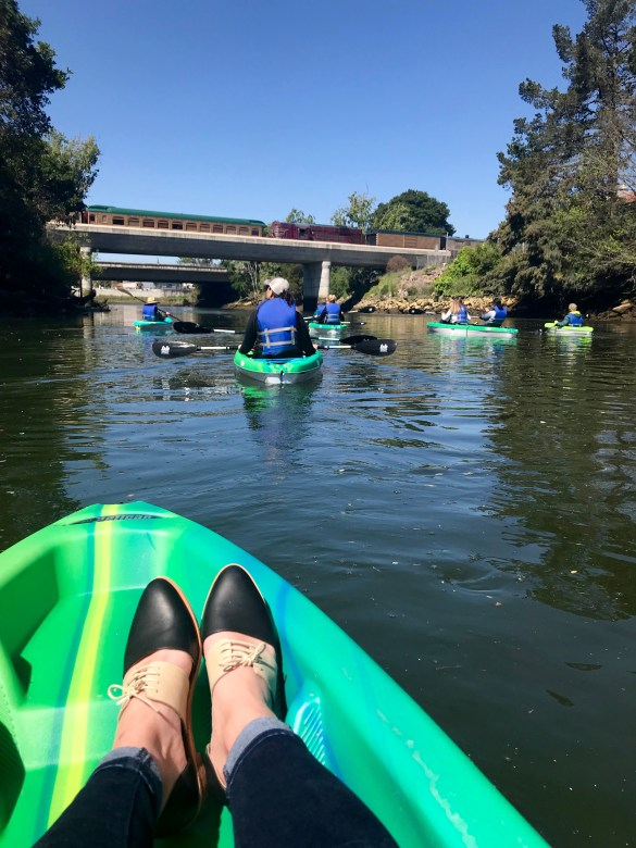 Napa River Kayaking - Downtown 6