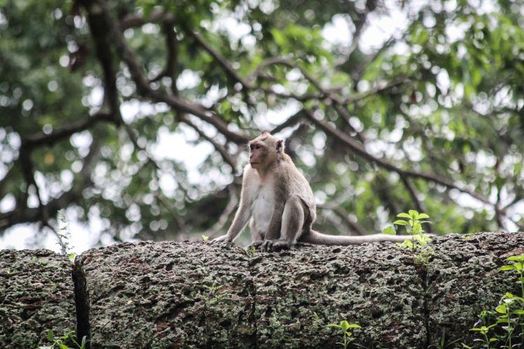20 Photos From Angkor Wat, Cambodia 6