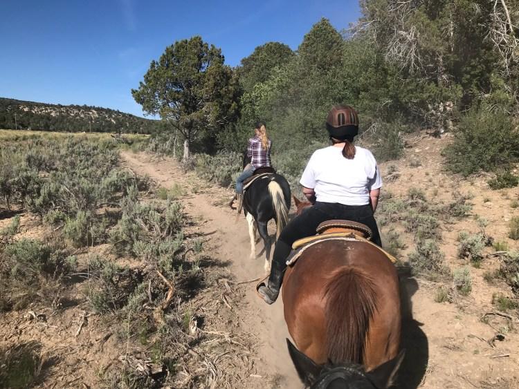 Trail ride Zion Mountain Ranch