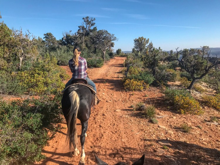 Zion Canyon Horseback Riding at Zion Mountain Ranch - trail