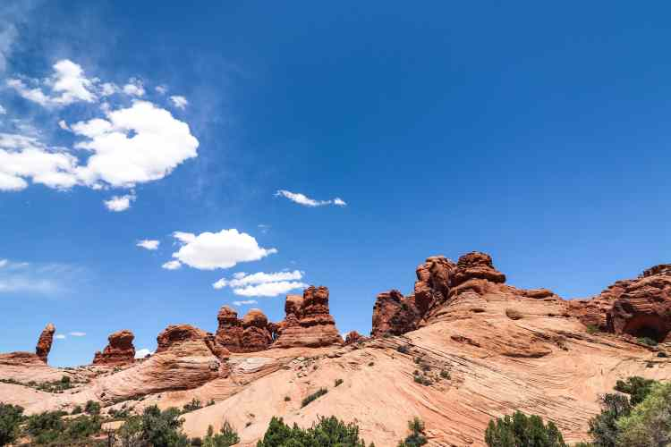 1-Day Tour of Canyonlands and Arches National Park   Utah National Parks