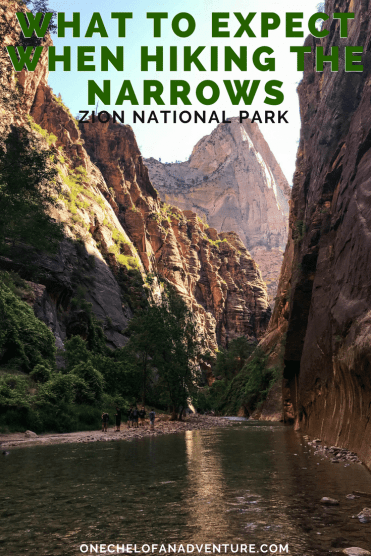 Hiking the Narrows in Zion National Park | What to Expect