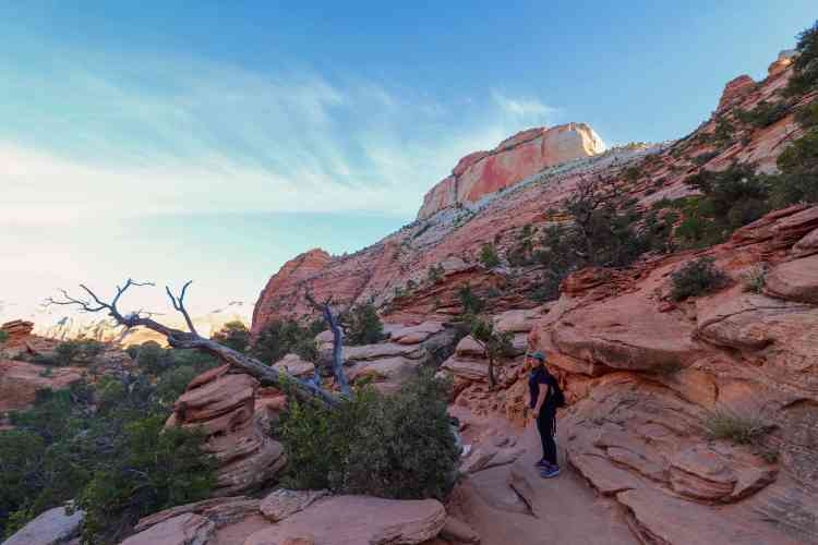 Canyon Overlook Trail | Zion National Park | Zion Must Do | Zion Best Hiking Trails