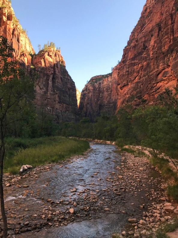Hiking The Narrows - Zion National Park-0564