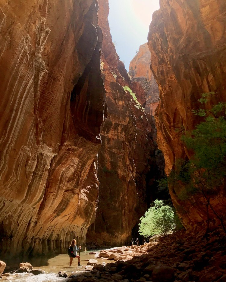 Hiking The Narrows - Zion National Park-2