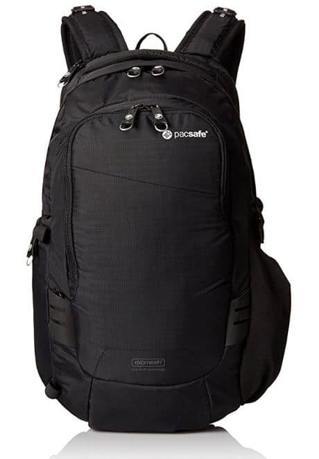 Anti Theft Travel Gear: Pacsafe Camsafe V17 Anti-Theft Camera Backpack