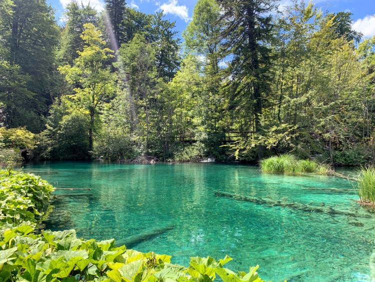 Swimming at Plitvice Lakes