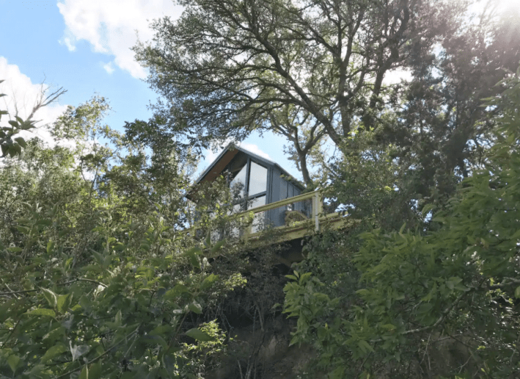 Sycamore Texas Treehouse
