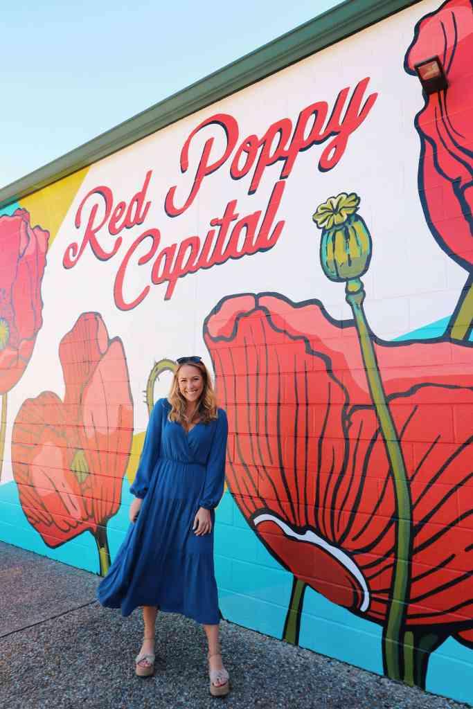 Red Poppy Mural in Georgetown