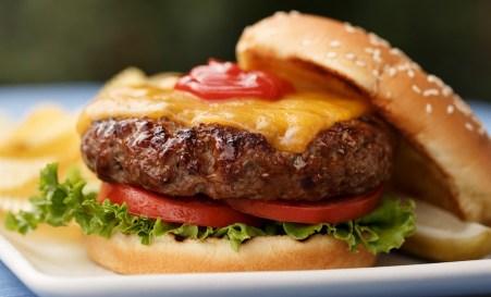 kfd-howtohamburger-Burgers_5_0391-1024x621