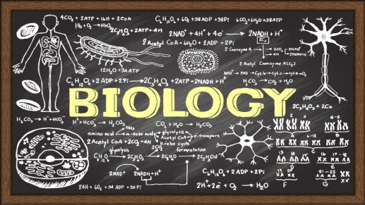 biology-101-syllabus-resource-lesson-plans_139158_large