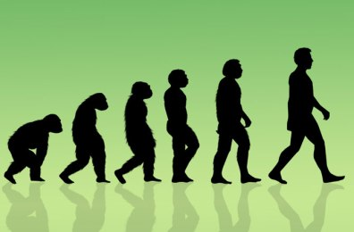 Image of silhouettes of an ape evolving into a human figure