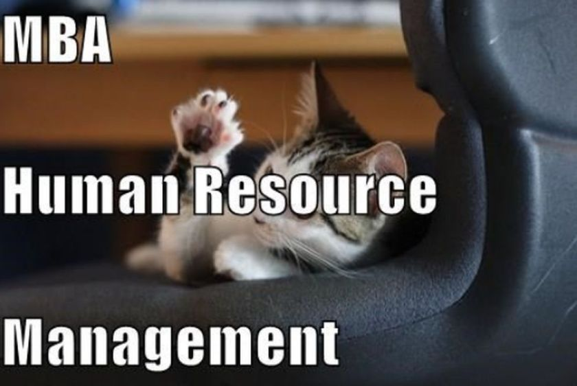 Human resources should be managed economically