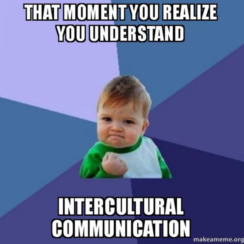 Intercultural communication is essential in a diverse culture meme