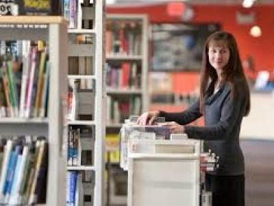 A library assistant organizing books
