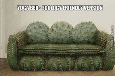 funny ecological version of yoga bed