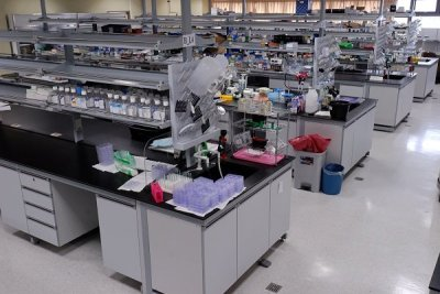 Image of a standard chemistry lab
