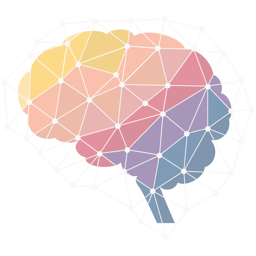 A visual graphic representing the brain