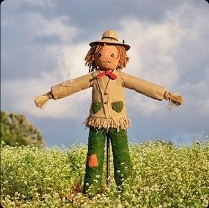 Αποτέλεσμα εικόνας για scarecrow