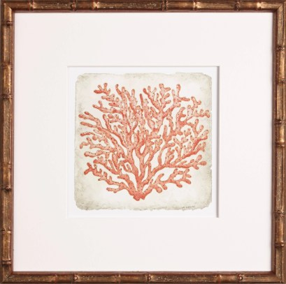 coral art, One Coast Design, Michelle Woolley Sauter
