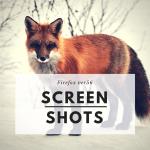 Firefoxに搭載されたスクリーンショット機能はイマイチ物足りなさを感じさせる