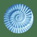 blue-shells