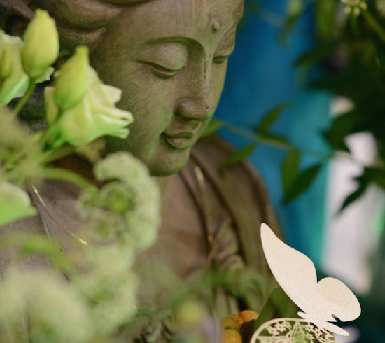 Buddha_Butterfly