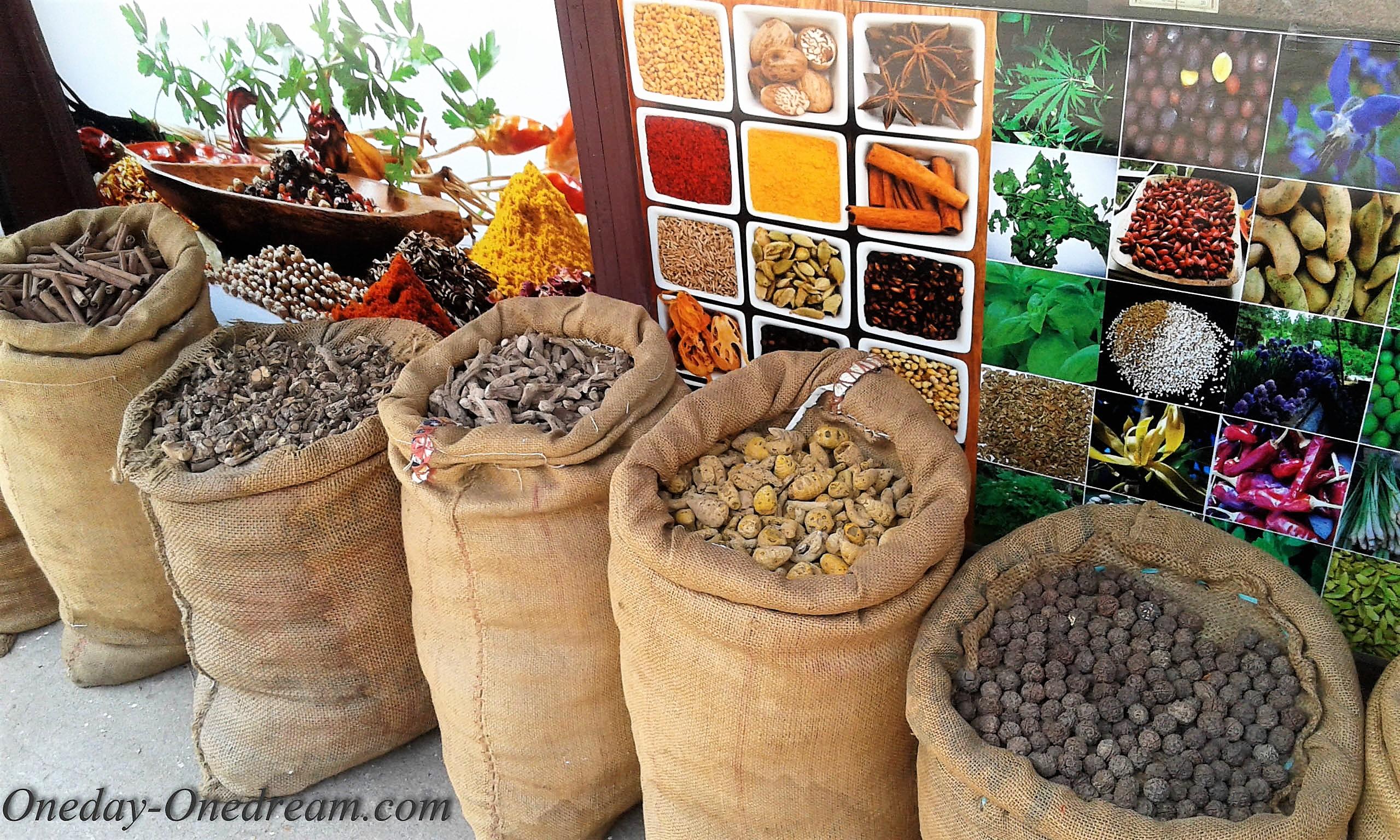 Kerala - Cochin