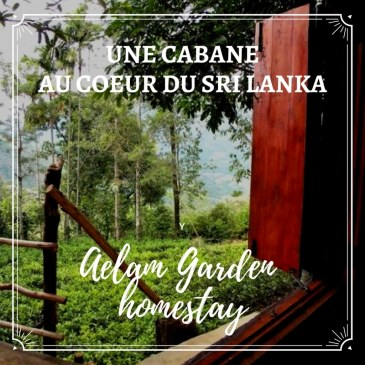 Une cabane au coeur du Sri Lanka